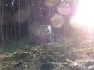 Forstbilder 2011_8