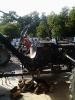 Forstarbeiten 2012_1
