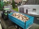 Forstarbeiten 2012_4